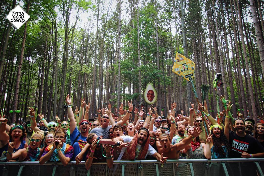 PP Forest stage 2016